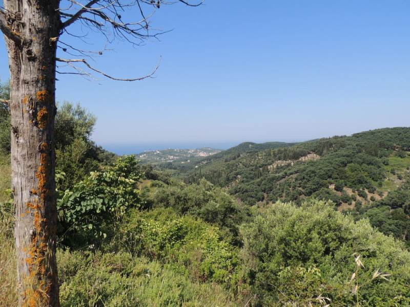 rr1648-roula-rouva-corfu-real-estate