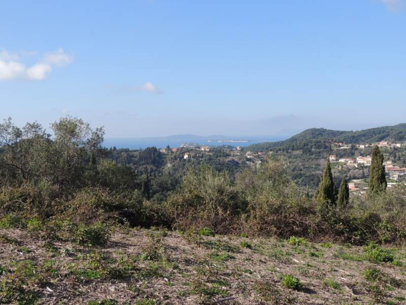rrl1631-roula-rouva-corfu-real-estate