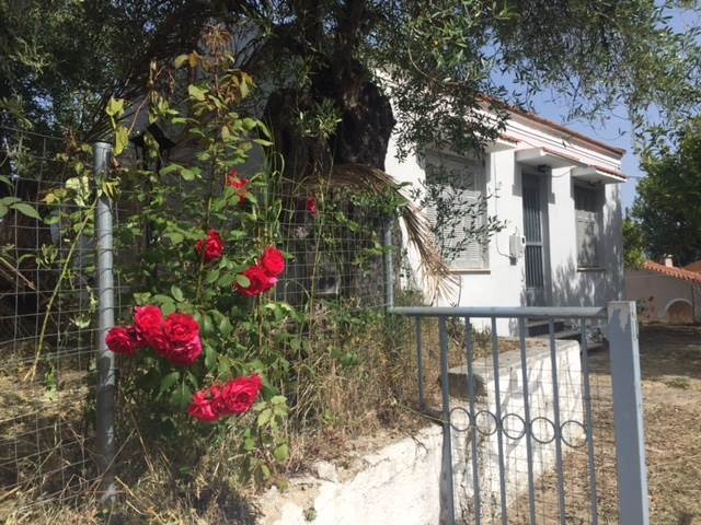 rr1742-roula-rouva-corfu-real-estate