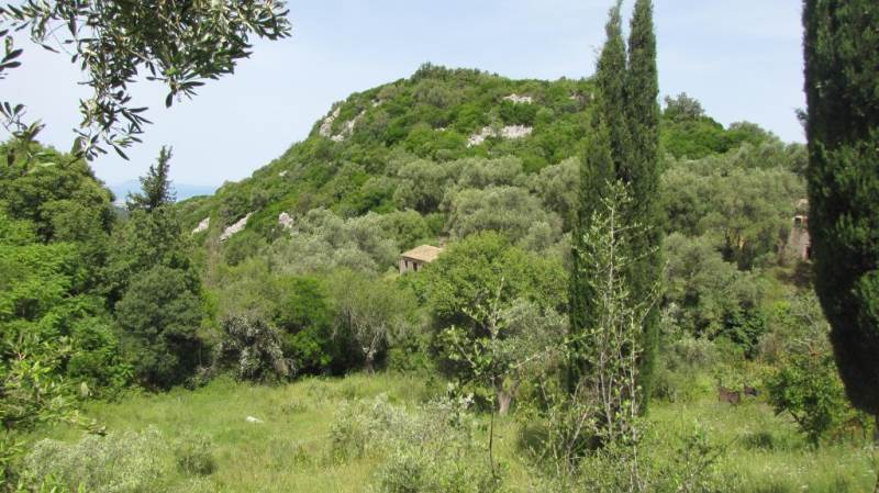 rrl1784-roula-rouva-corfu-real-estate