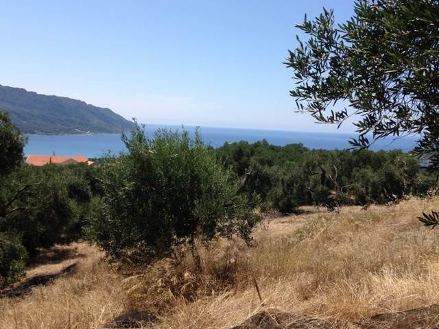 rr1715-roula-rouva-corfu-real-estate