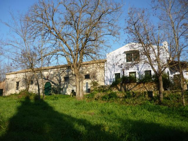 rrl1471-roula-rouva-corfu-real-estate