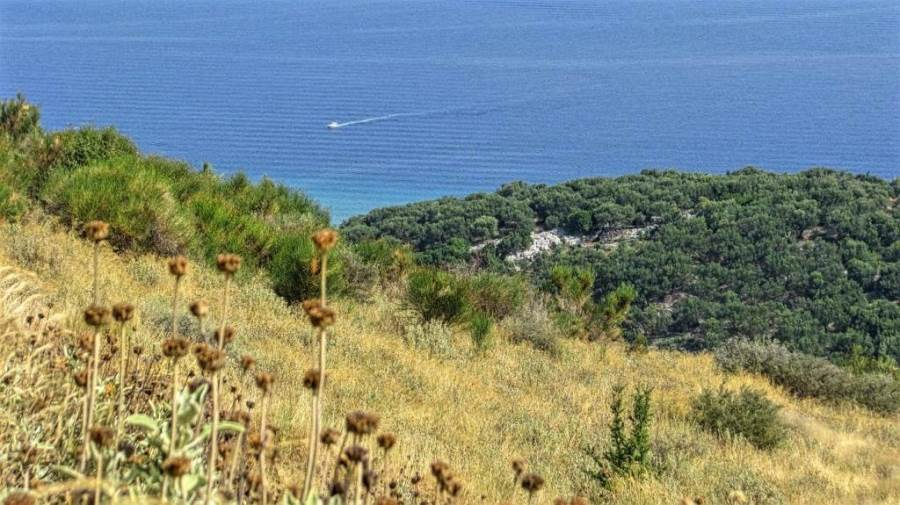 rr2164-roula-rouva-corfu-real-estate