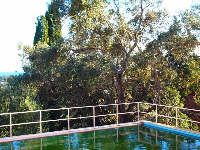 rr520-roula-rouva-corfu-real-estate