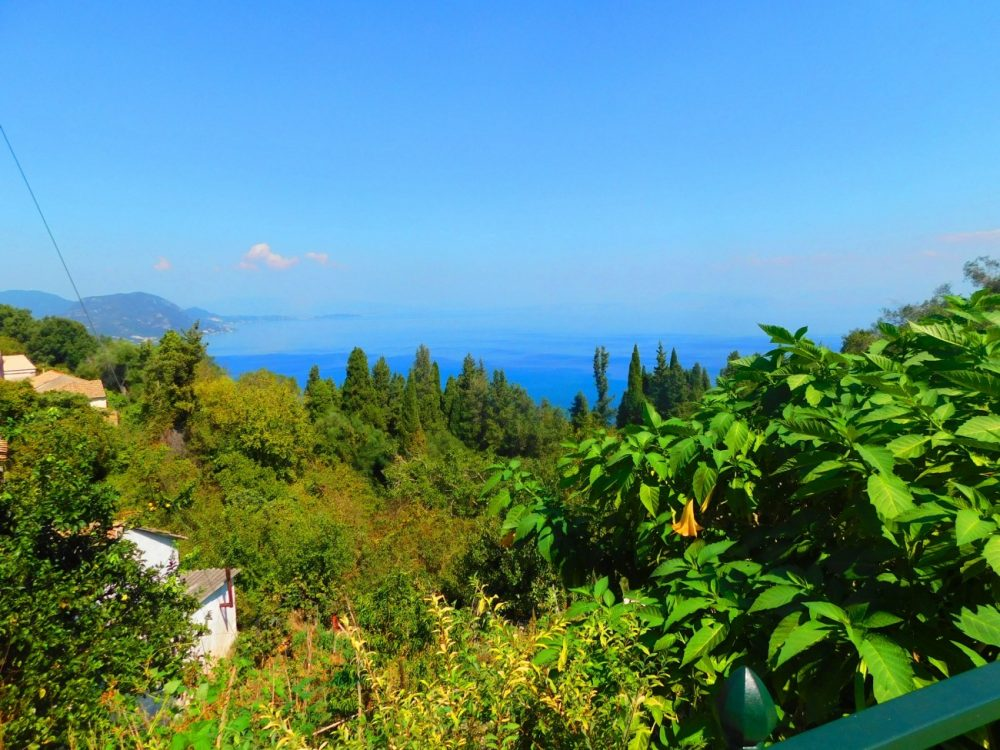 traditional-detached-house-7-roula-rouva-corfu-real-estate