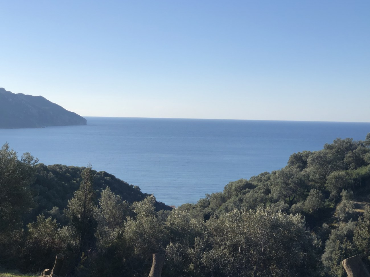 img-7297-roula-rouva-corfu-real-estate