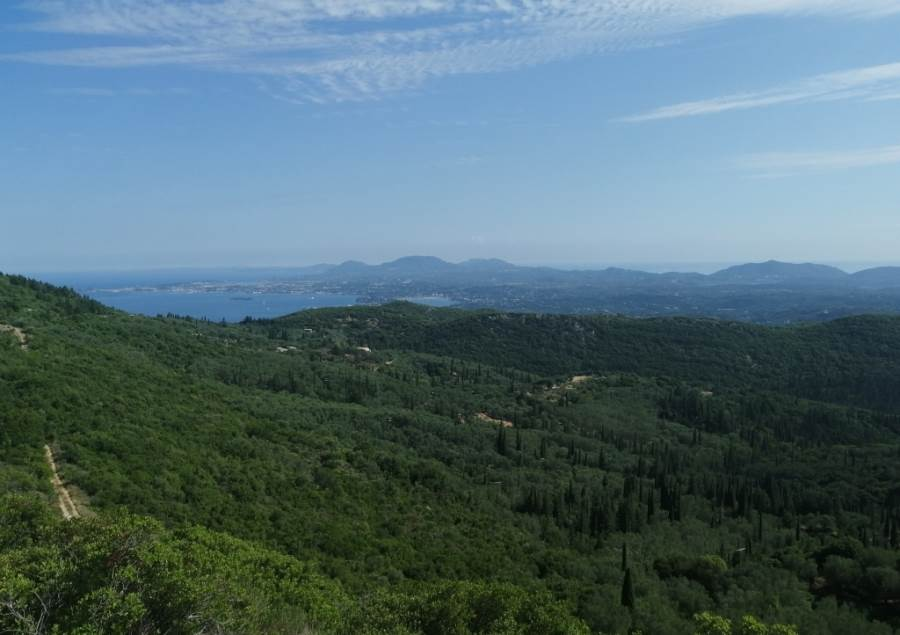 rr3323-roula-rouva-corfu-real-estate