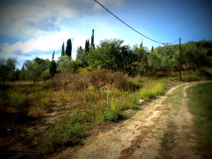 rr3402-roula-rouva-corfu-real-estate