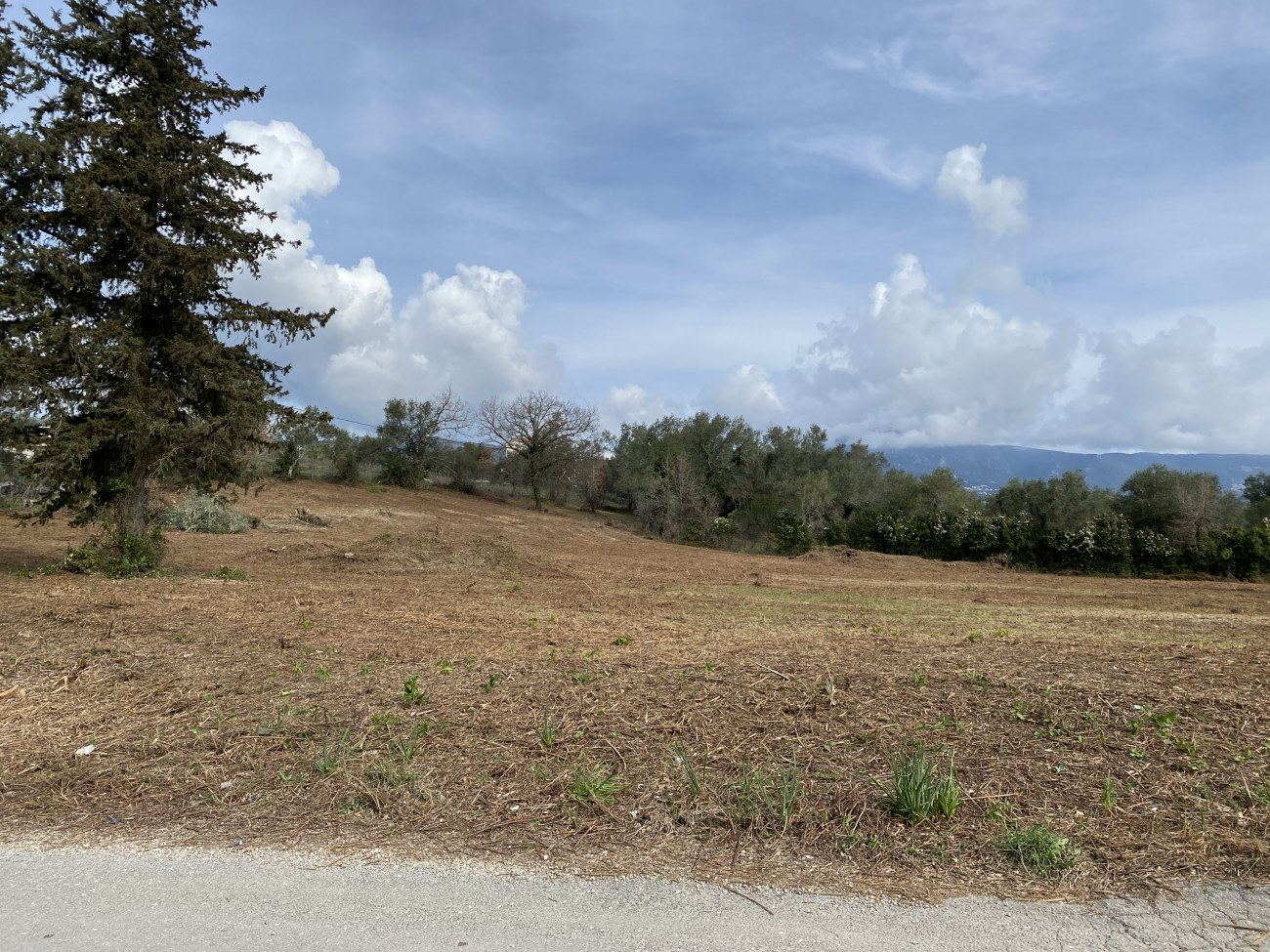 img-0683-roula-rouva-corfu-real-estate