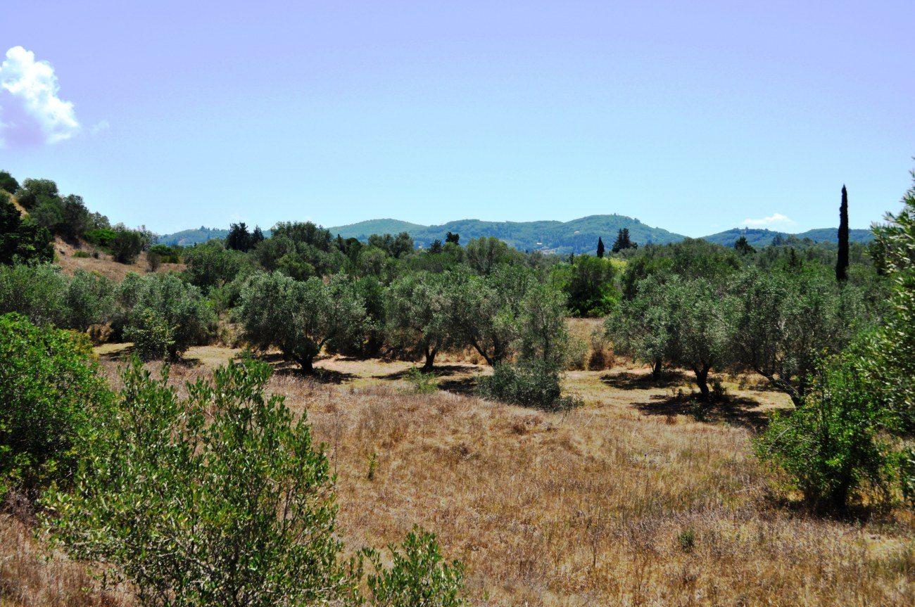 dsc-1100-roula-rouva-corfu-real-estate