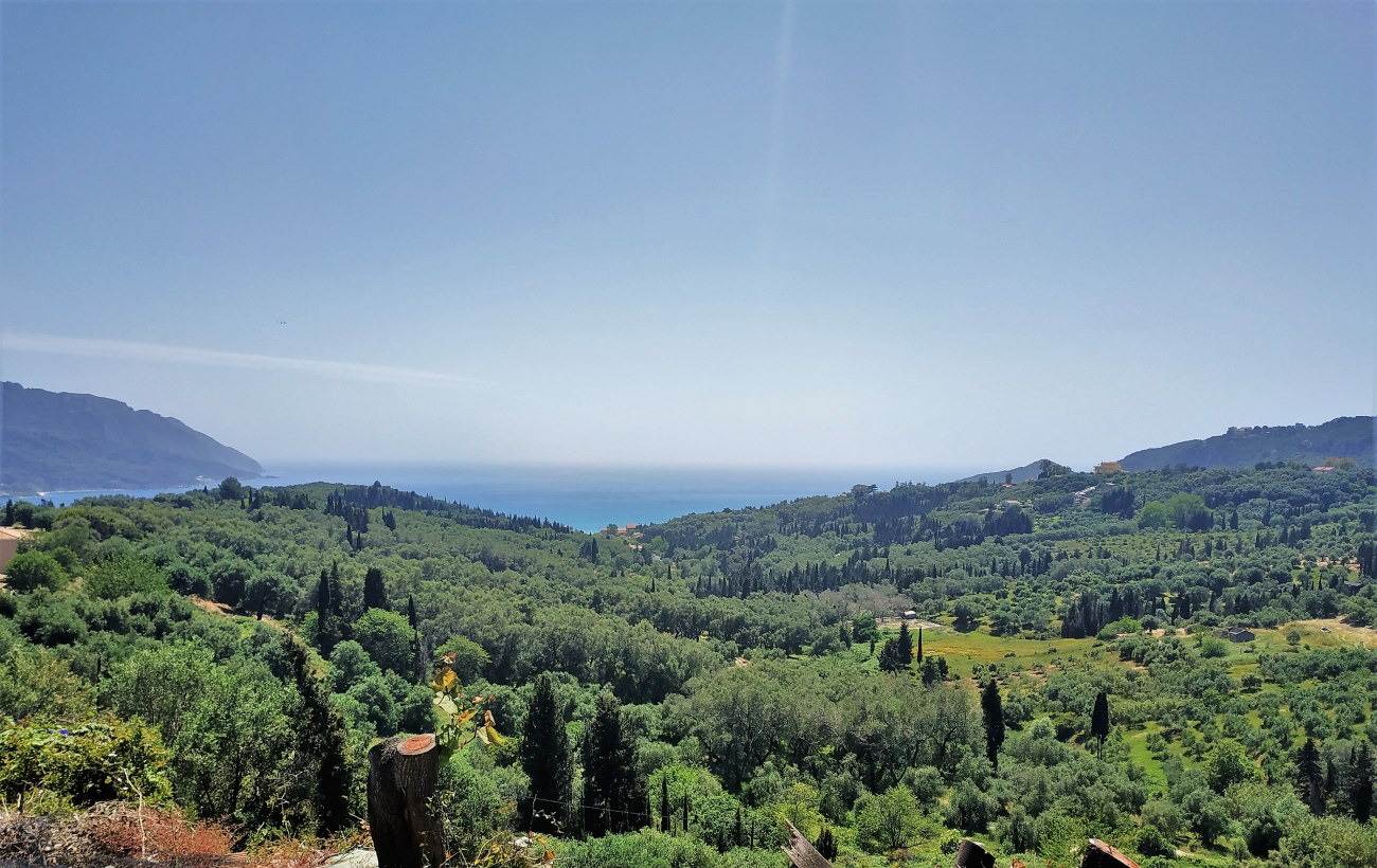 3-roula-rouva-corfu-real-estate