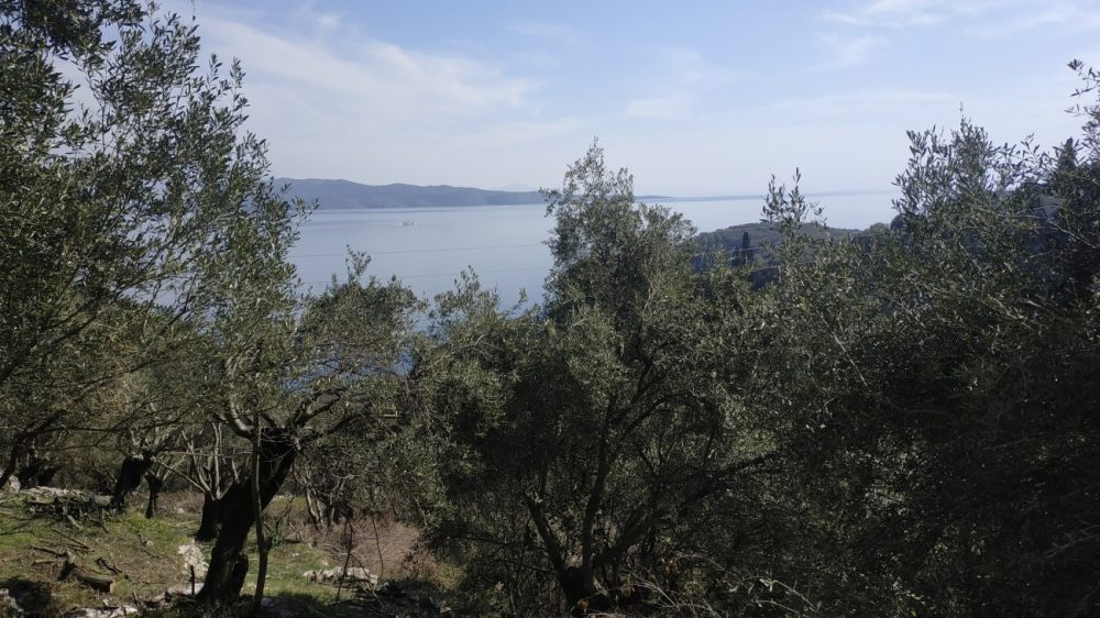 img-20210225-134722-roula-rouva-corfu-real-estate