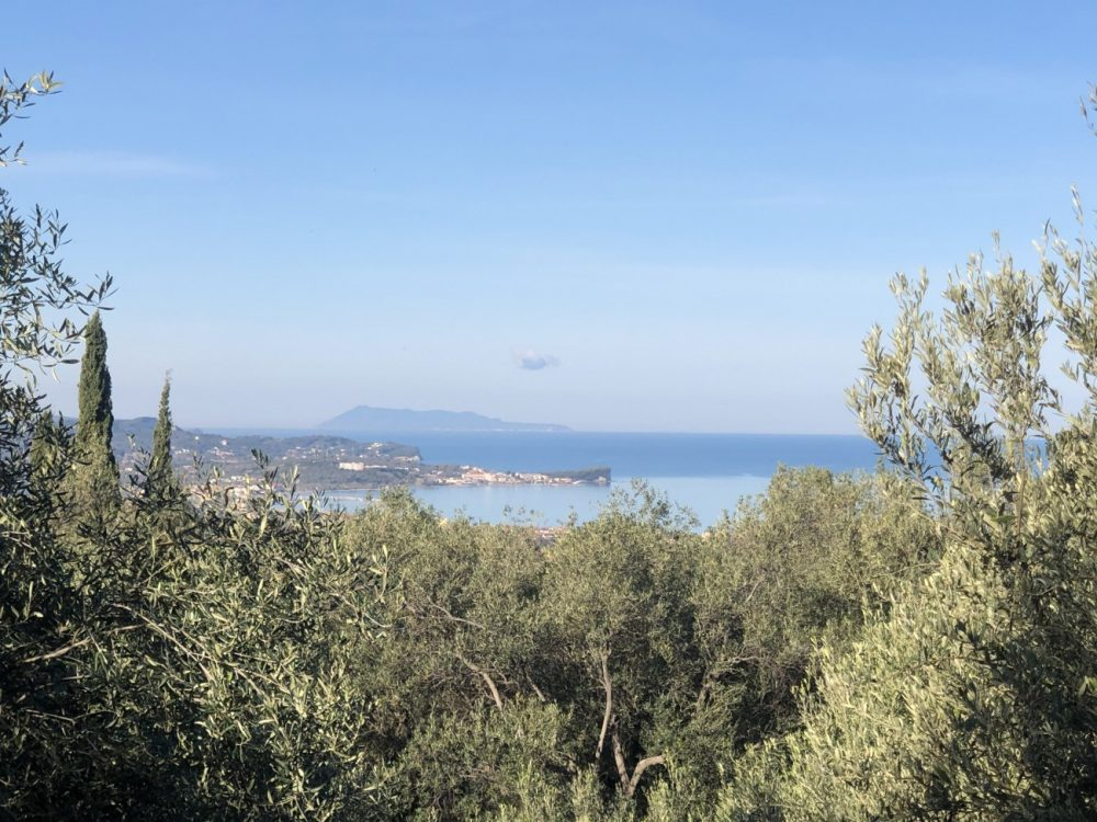 img-5494-roula-rouva-corfu-real-estate