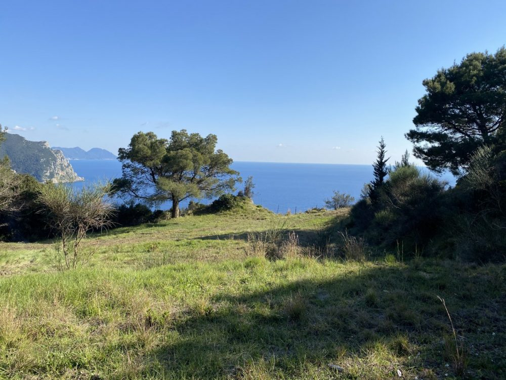 img-6671-roula-rouva-corfu-real-estate