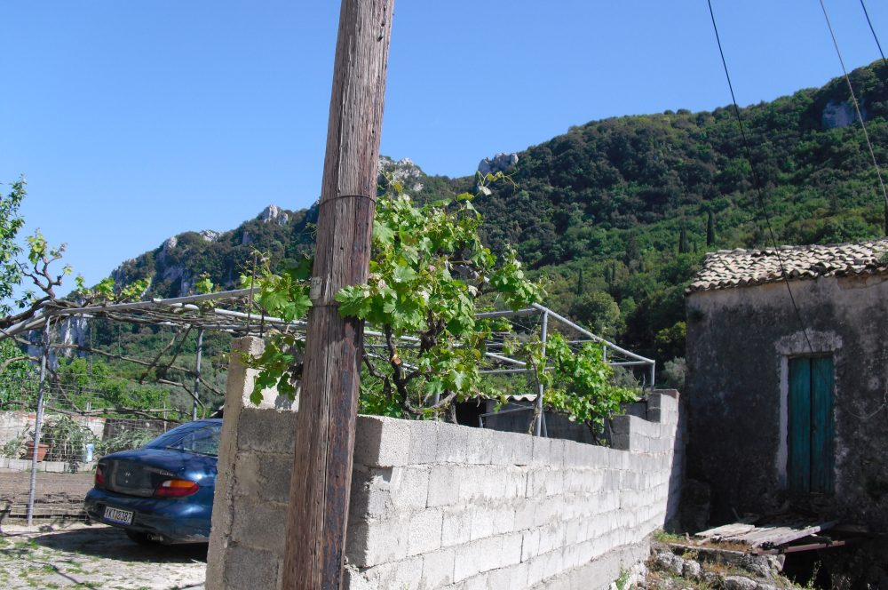 rr149-lhs-wall-roula-rouva-corfu-real-estate